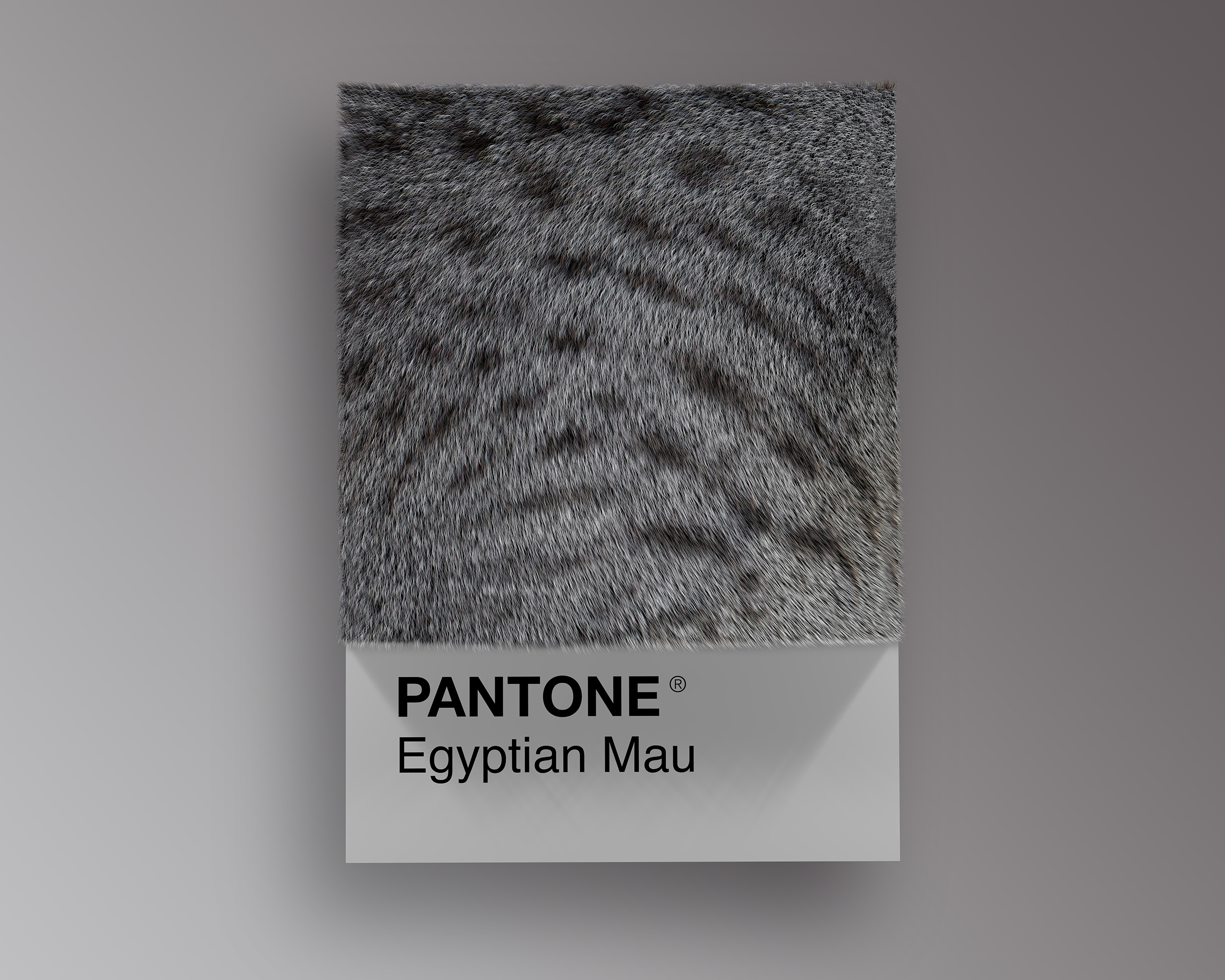 Egyptian Mau as Pantone