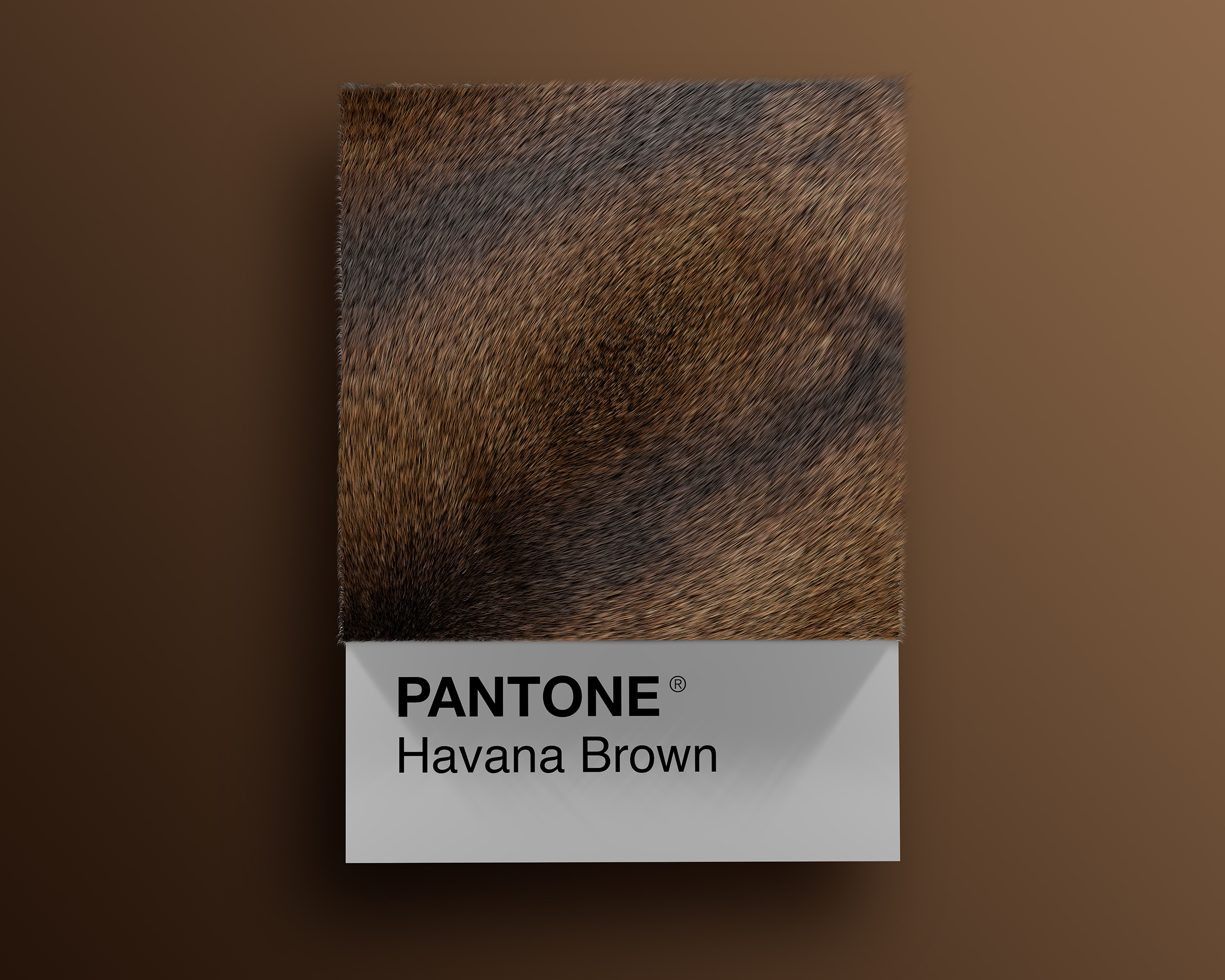 Havana_Brown as Pantone