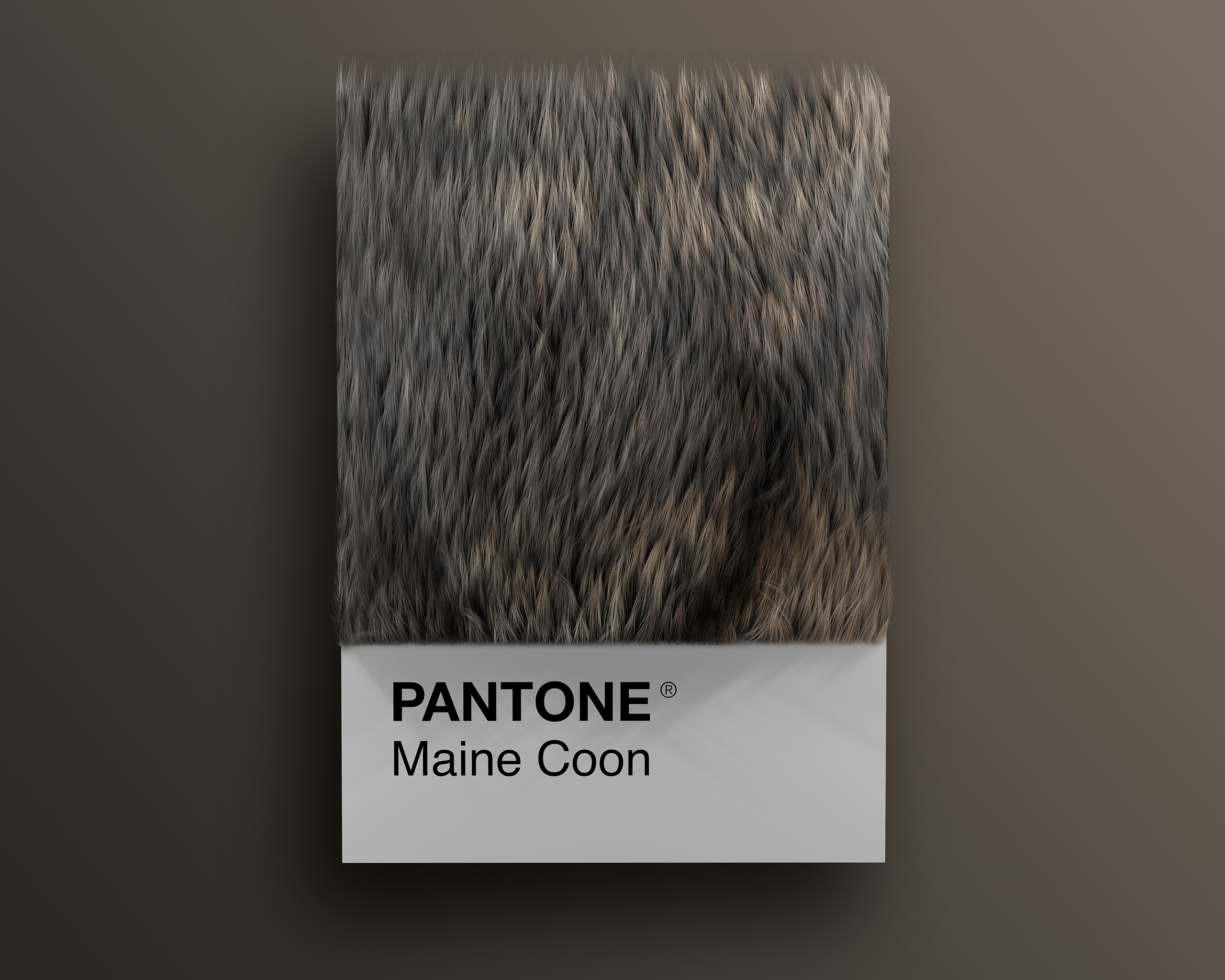 Maine_Coon as Pantone