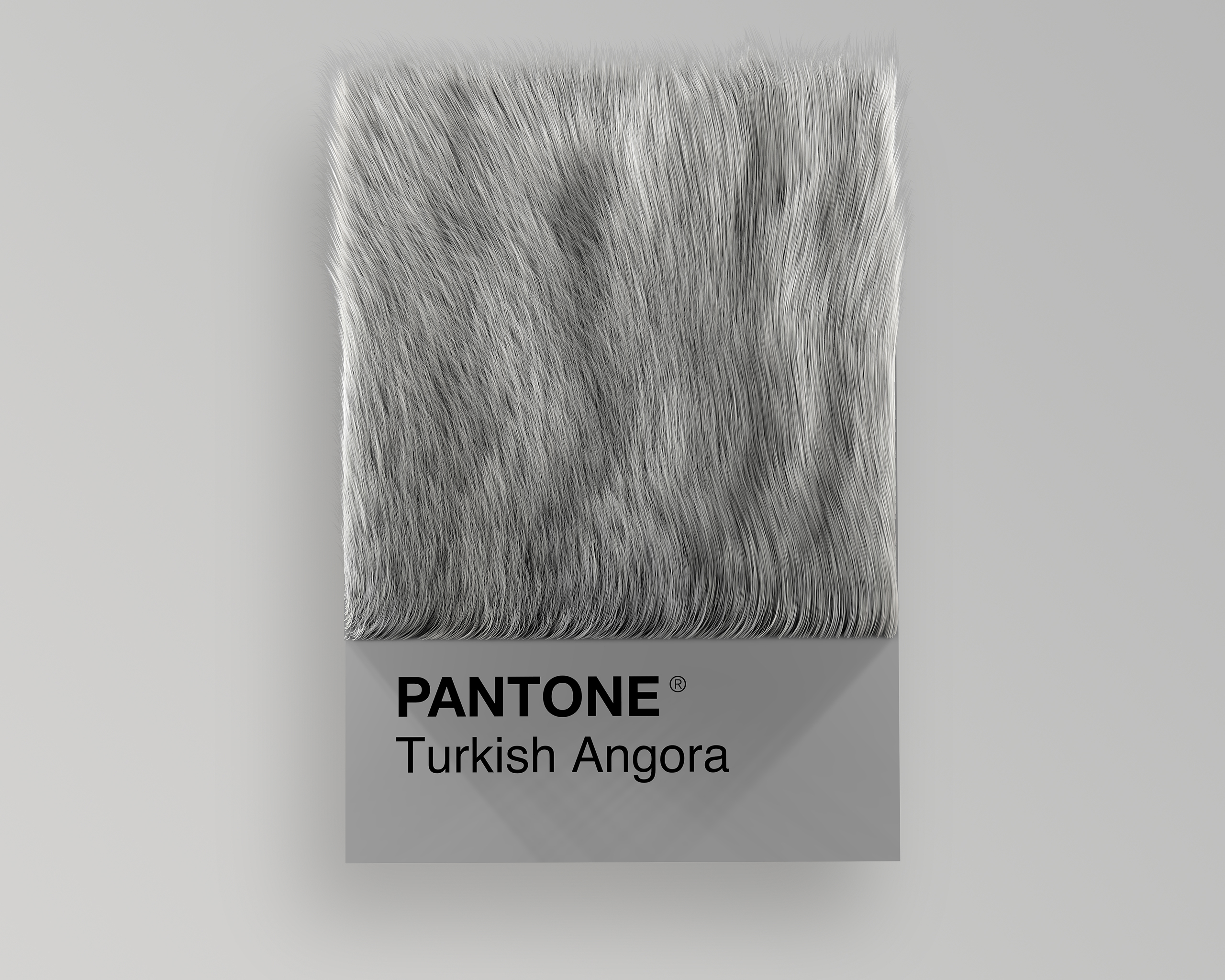 Turkish Angora as Pantone